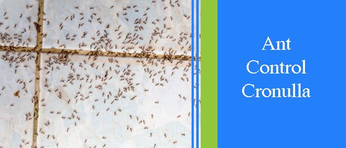 Ant Control Cronulla